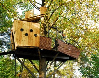 pirate-ship-treehouse