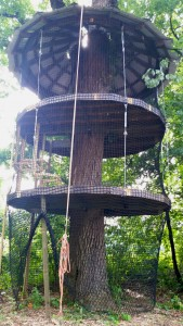 Greybeard Treehouse